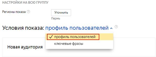 02-sekrety-rsya--nastroyka-profilya-auditorii.png