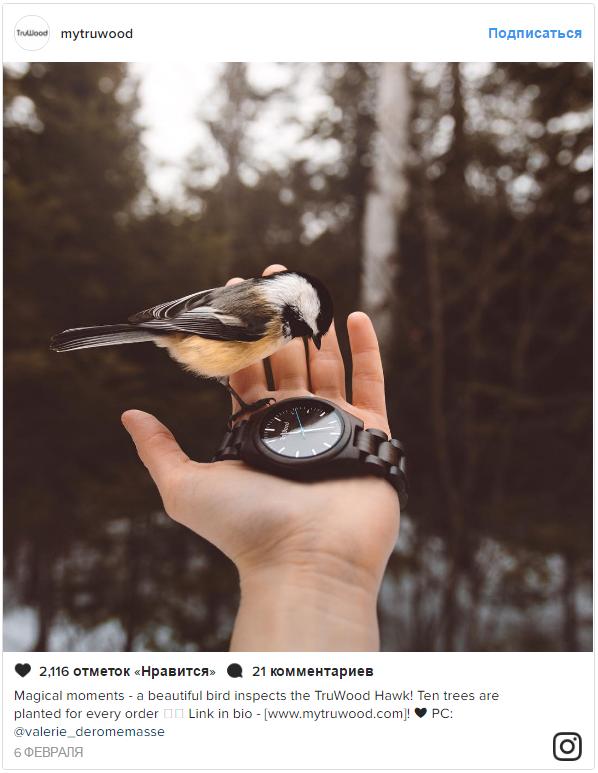 Продажи в Instagram – второй пример TruWood